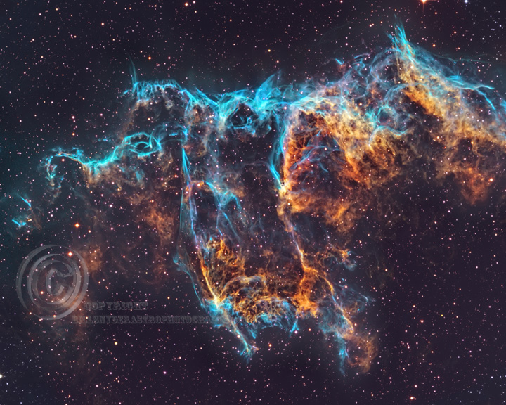 Eastern-Veil---8X10---72p-for-Web-