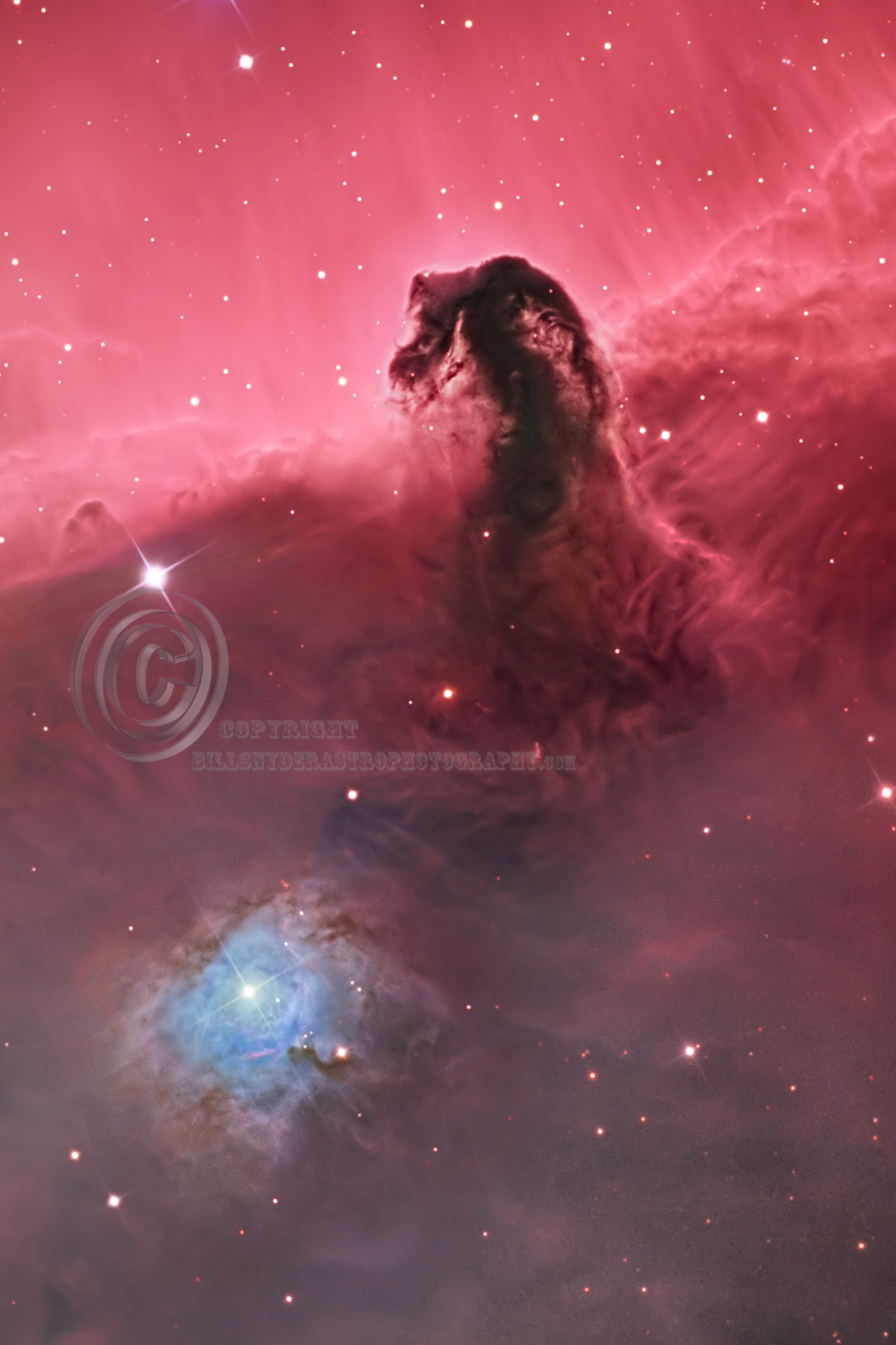 IC434-Horsehead--P-all-SRO-16X24-72pic