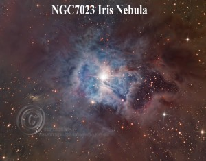 NGC7023_Iris-11X14--72p-for-Web-Labeled--
