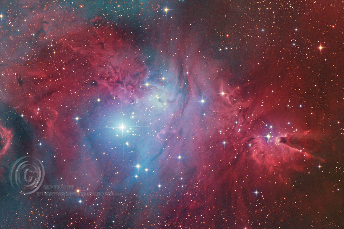 NGC2264-Christmas-tree-16x24-for-website