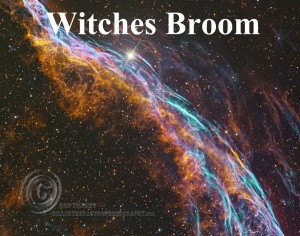Witches-Broom-11X14-2Labled-for-Website